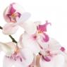 Орхидея ( 97 см) (038FS-WT)
