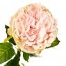 """Цветок искусственный """"Роза бархатная нежно-розовая"""" (2000-034PK)"""