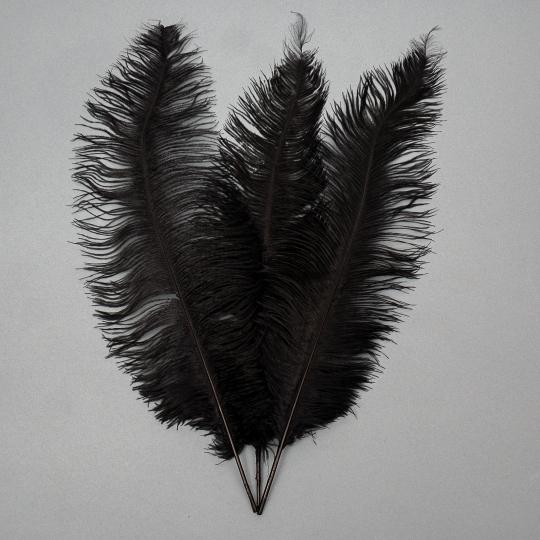 Страусиное перо 55 см Черный (8501-001/black)