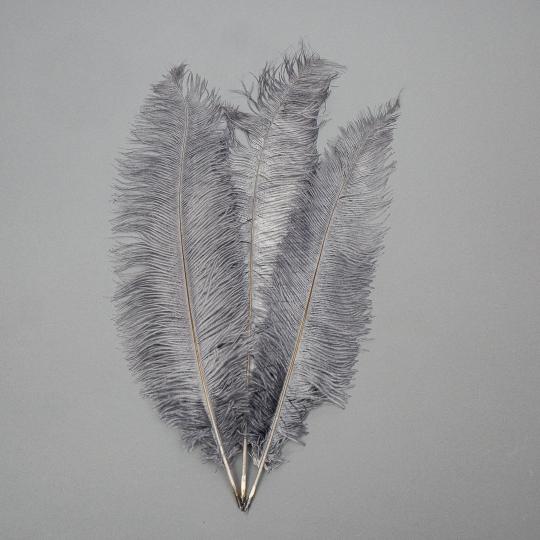 Страусиное перо 55 см темно-серый (8501-001/dark-grey)