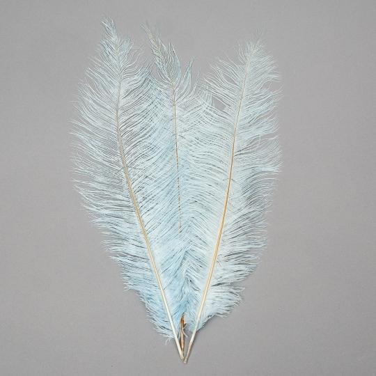 Страусиное перо 55 см светло-голубой (8501-001/light-blue)