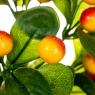 Фруктовая ветка с желтыми ягодами (8001-003)