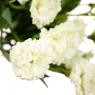 """Цветочный букет """"Белоснежный"""" (8023-002/white)"""