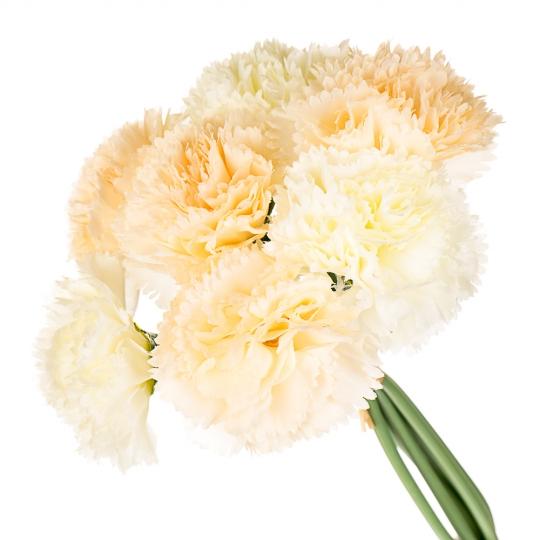 """Искусственные цветы  """"Шток-роза"""" микс (0247J)"""