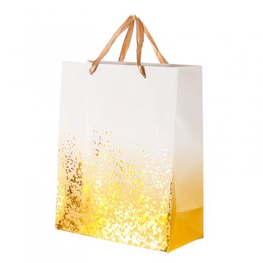 """Пакет подарочный, серия """"Экспрессия"""" (18*10*23) (213JH)"""