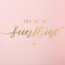 "Коробка для цветов набор 3 шт. "" You are my sunshine"" розовые (0606J)"