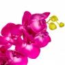 """Цветок """"Орхидея"""" фуксия 1 м (Силикон) (8100-019)"""