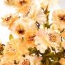 Искусственный цветок 28 см (150JH)