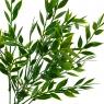Ветвь данаи зеленая искусственная (8408-018)