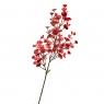 Ветвь эвкалипта алая искусственная (8408-027)