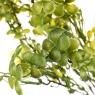 Клевер, микс цвета (зеленый, коричневый) (052FW)