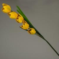 Тюльпан (102 см)