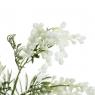 Мимоза,белая (8606-002)