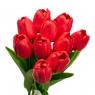 Букет тюльпанов, красный (8606-003)