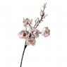 Ветка цветущей магнолии 126 см, пудровая (8606-009)