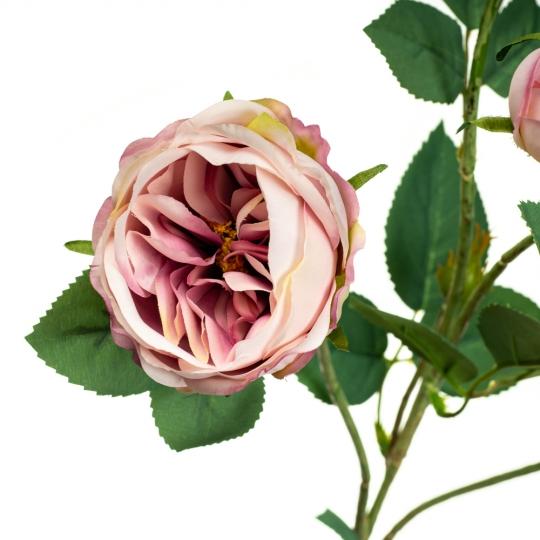 Ветка розы, пудровая (8721-009)