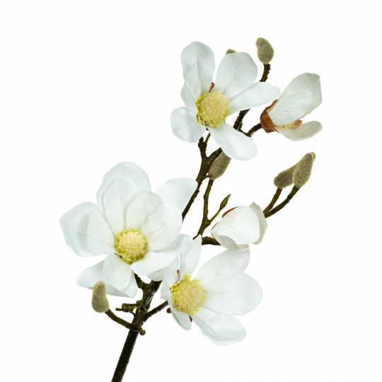Ветка цветущей магнолии 90 см, белая (8721-013)