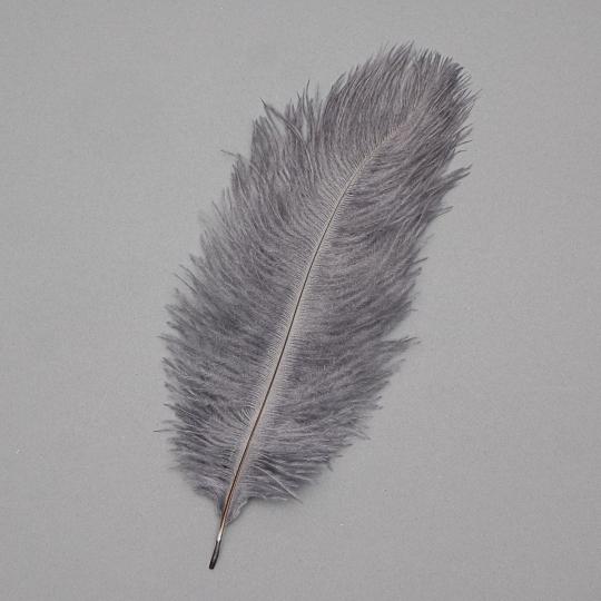 Страусиное перо 25-30 см темно-серый (8501-002/dark-grey)
