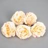 Головка розы 7 см. *рандомный выбор цвета (8502-009)