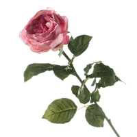 Роза (70 см)