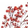 Ветка с ягодами (8100-001)