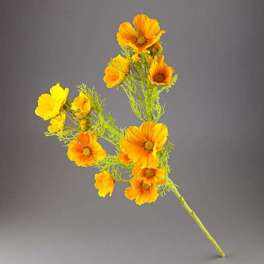 Космея (78 см) (014F/yellow)