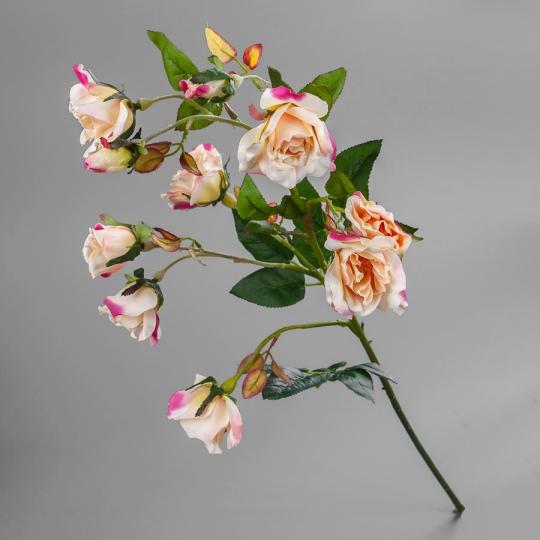 Камелия (75 см) (025F/pink)