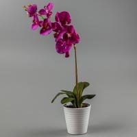 Орхидея (силикон, 57 см)
