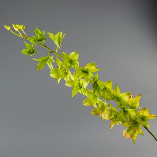 Орхидея (силикон, 87 см) (072F/green)