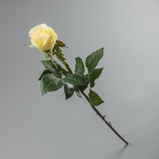 Роза (56 см) (085F/white)