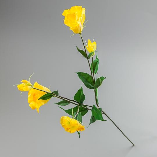 Эустома (80 см) (090F/yellow)