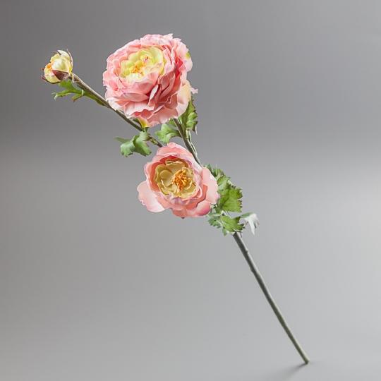 Ранункулюс (73 см) (091F/pink)