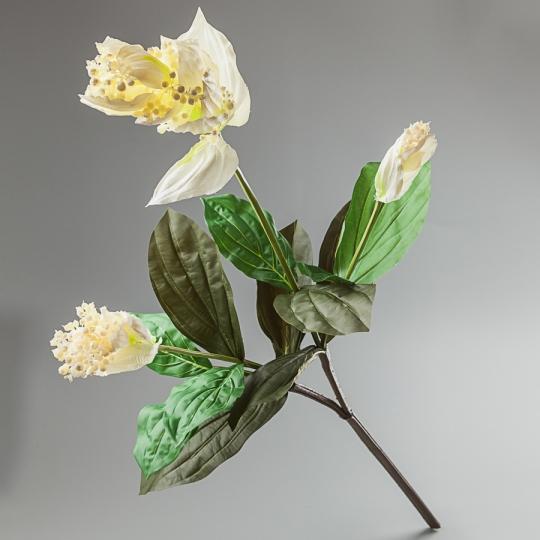 Мединилла (120 см) (092F/white)