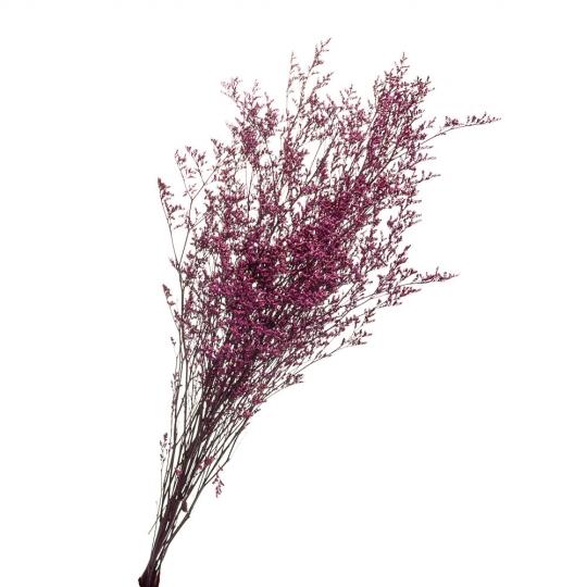 Декоративная ветка Сиреневая, стабилизированная (8213-013)