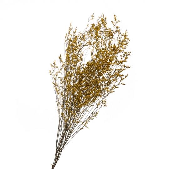 Декоративная ветка Желтая, стабилизированная (8213-014)
