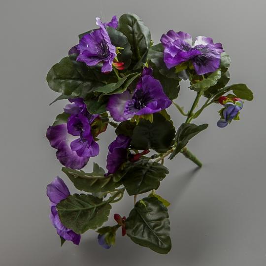 Анютины глазки (25 см) (106F/violet)