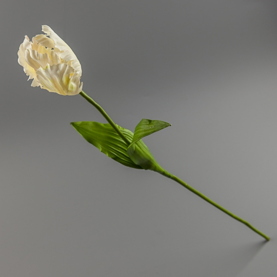 Тюльпан (силикон, 77 см)
