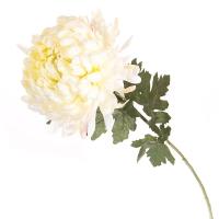 Хризантема (91 см)