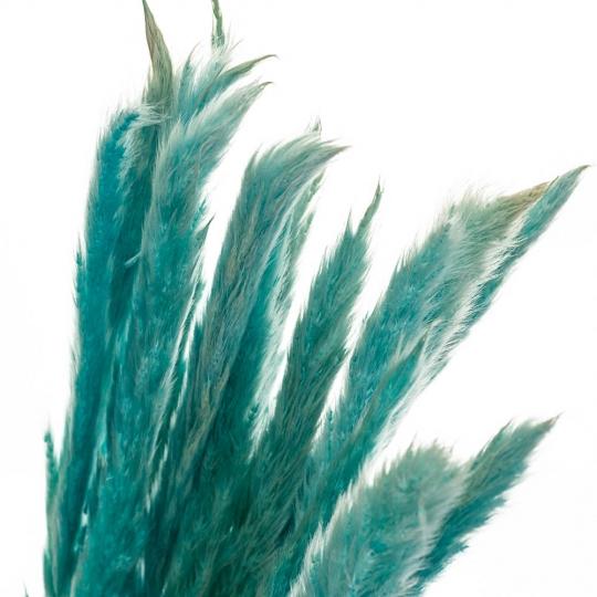 Пампасная трава Голубая, стабилизированная (8213-043)