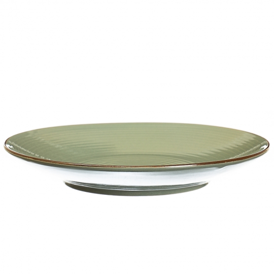 Цветная тарелка (4 цвета) (005ALP)
