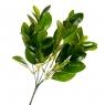 Цветок Лавровые листы (2001-006)