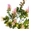 Цветок Аконит розовый (2001-009PK)