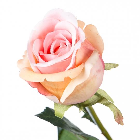 Роза (77 см, силикон) (008F/peach)