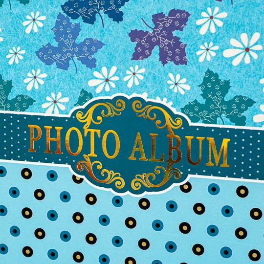"""Фотоальбом """" Цветы"""" *Рандомный выбор дизайна. (8423-014)"""