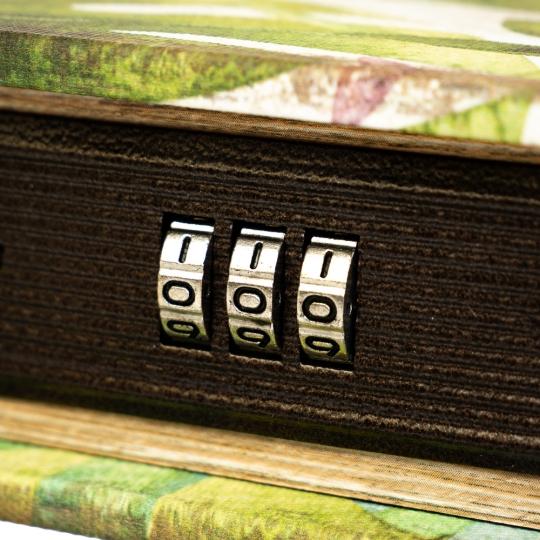 "Книга-сейф ""Фламинго"" (кодовый замок) (0001-005)"