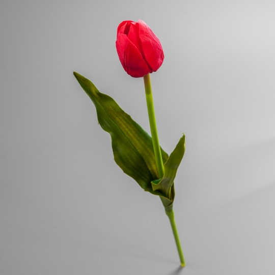 Тюльпан (55 см) (005-20S)