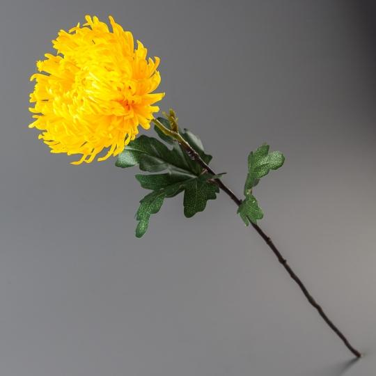 Хризантема (84 см)