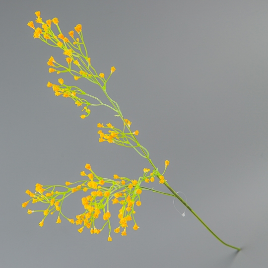 Гипсофила (67 см) (005FO)