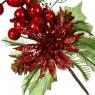 Остролист с ягодами блестящий (006NT/red)