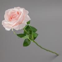 Роза (63 см)